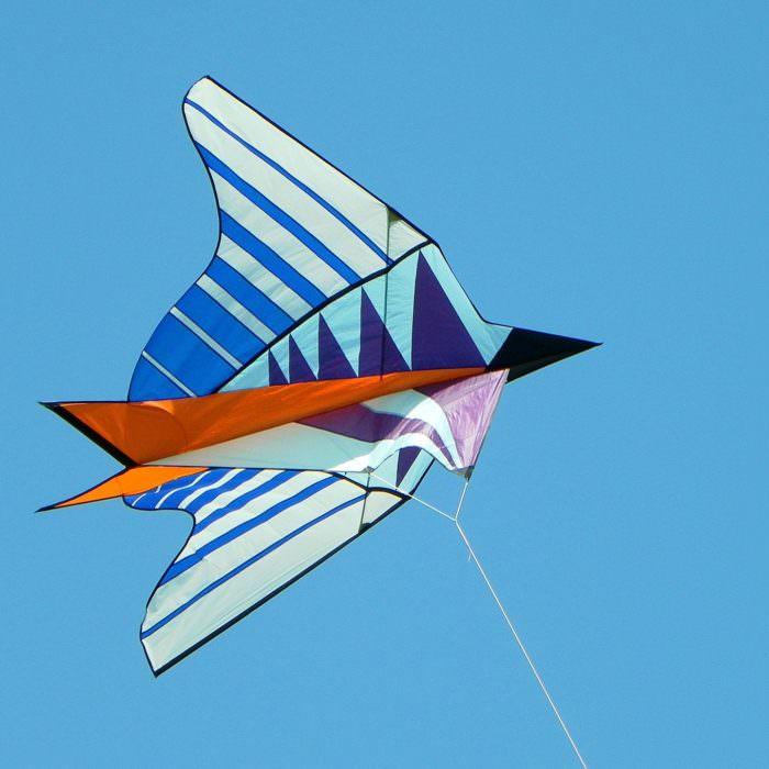Drachenfliegen beim Drachenfest in Norddeich