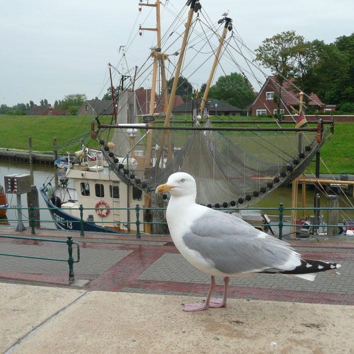 Greetsiel Fischerhafen