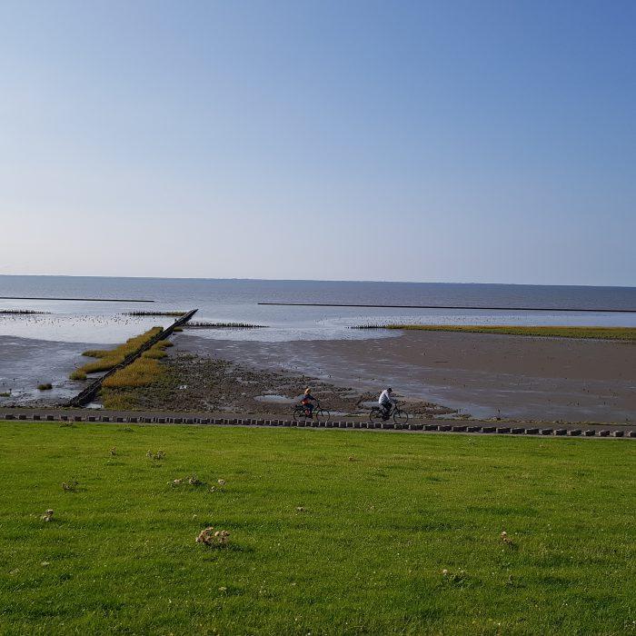 Fahrradfahren am Nordseedeich
