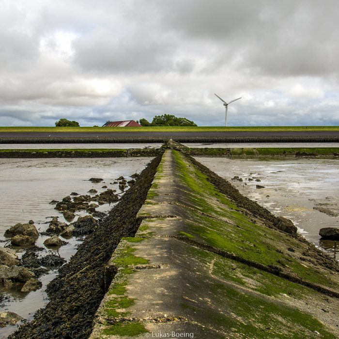 Ostfriesisches Wattenmeer am Ferienhof